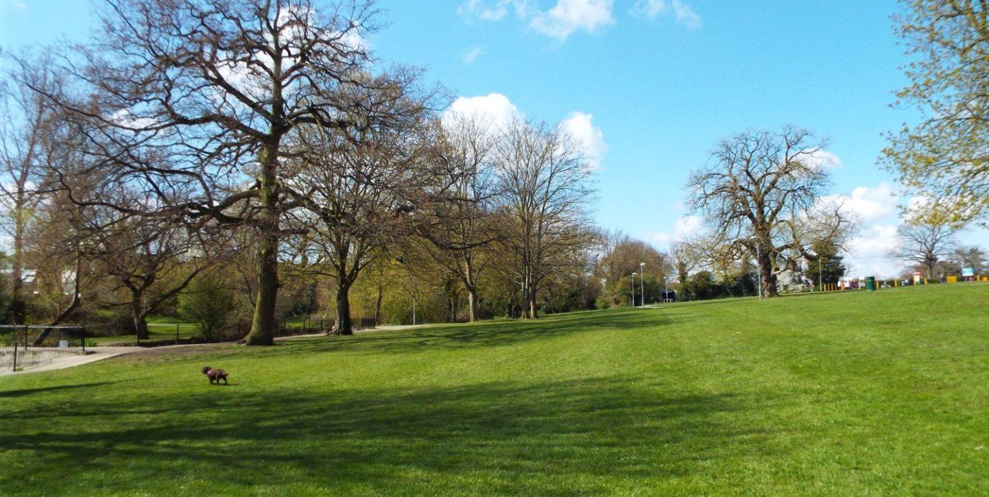Noakes Park