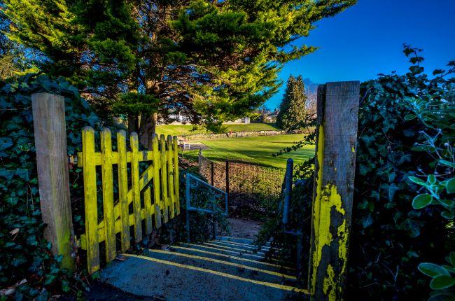 Admirals Park & Tower Gardens_winter