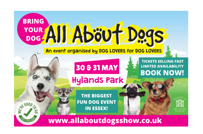 All About Dogs Show