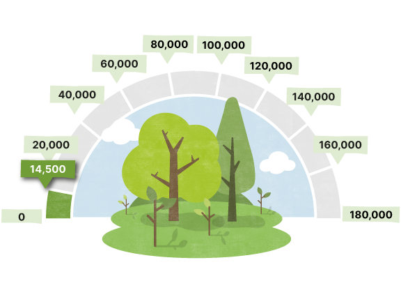 Greening Chelmsford Statistics