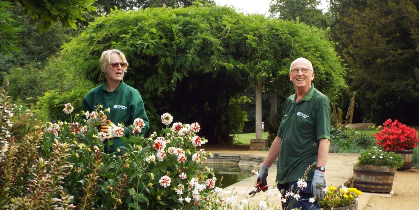 Hylands garden vols