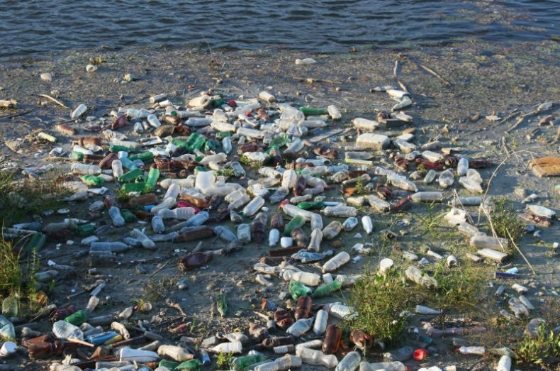 plastic pollution in Chelmsford rivers