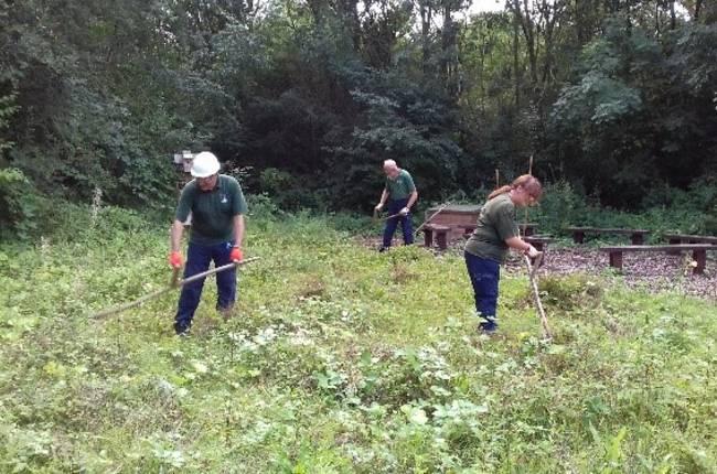 volunteers in meadow