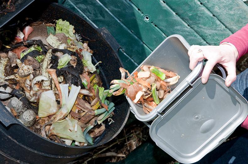 compost process 1