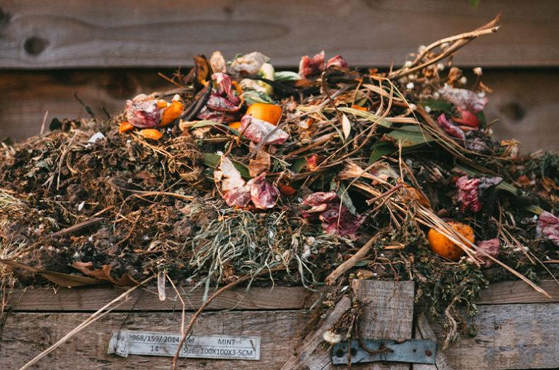 compost process 2