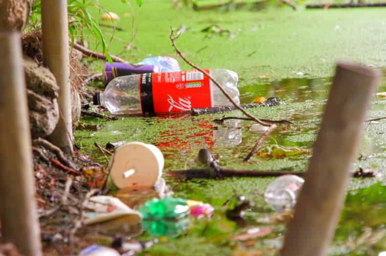 reducing plastic waste