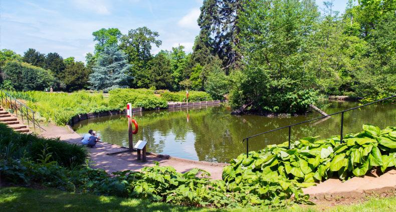chelmsford parks environmenta